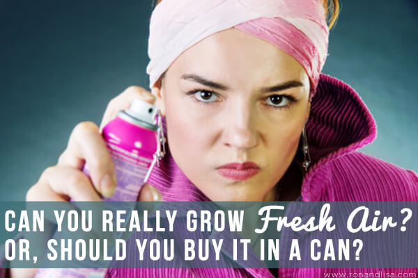 Can You Really Grow Fresh Air? Or, Should You Buy it in a Can?