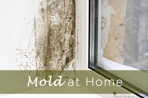 Mold at Home