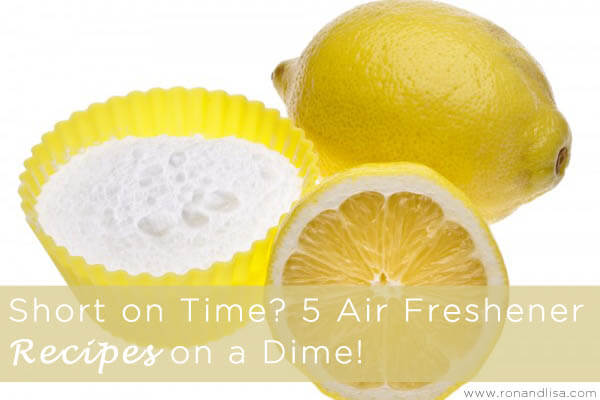 Short on Time 5 Air Freshener Recipes on a Dime