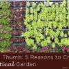 Green Thumb-5 Reasons to Create a Vertical Garden copy