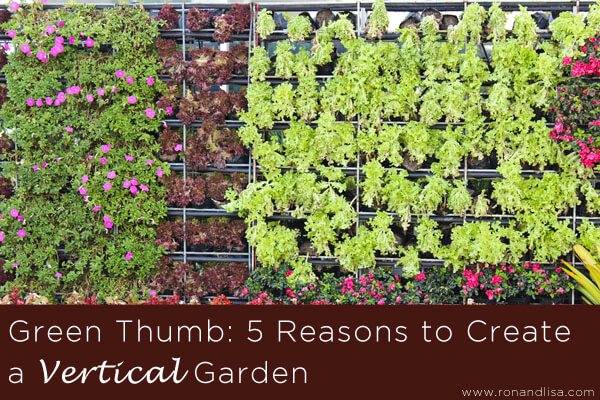 Green Thumb-5 Reasons to Create a Vertical Garden copy
