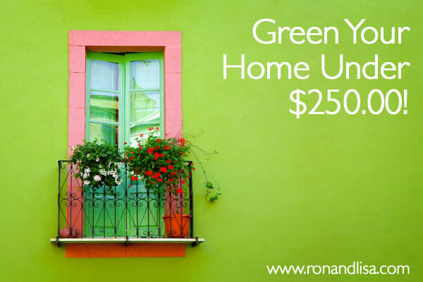 Green Your Home for Under $250