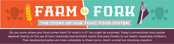 Farm to Fork: Our Toxic Food System