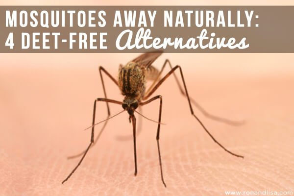 MOSQUITOES AWAY Naturally: 4 DEET-Free Alternatives
