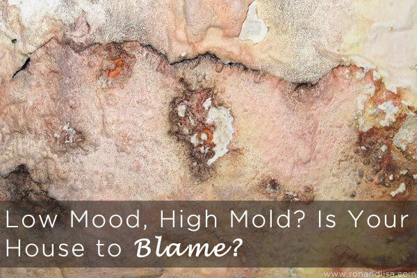 Low Mood, High Mold? Is Your House to Blame?