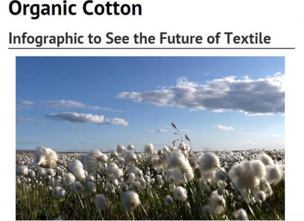 Organic Cotton: The Future of Textiles