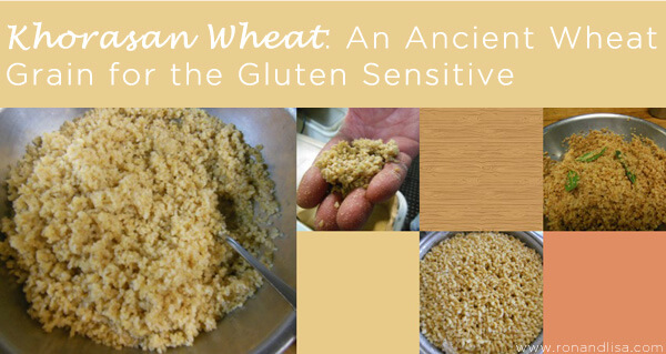 Khorasan Wheat: An Ancient Wheat Grain for the Gluten Sensitive