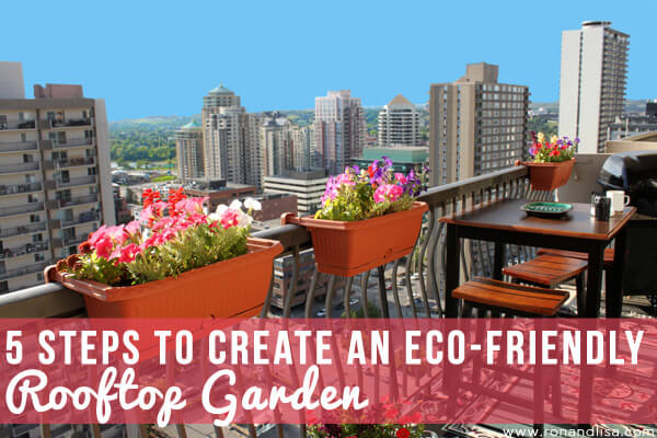 5 Steps to Create an Eco-Friendly Rooftop Garden
