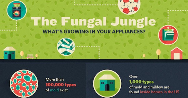 What's Growing in Your Appliances?