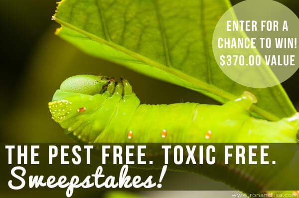 The Pest Free. Toxic Free. Sweepstakes!