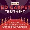 Tips to Clean Carpet Stains, Naturally copy