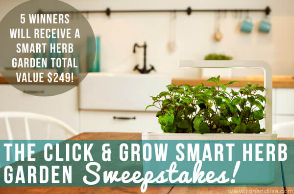 click & grow garden sweeps copy