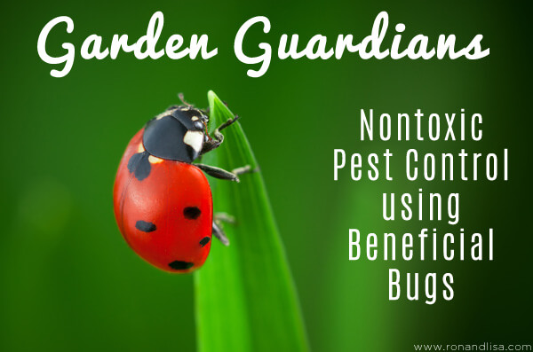 Garden Guardians: Nontoxic Pest Control using Beneficial Bugs