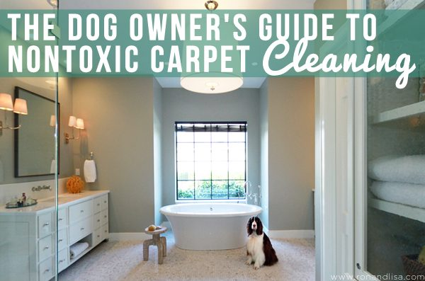 The Dog Owner's Guide to Nontoxic Carpet Cleaning