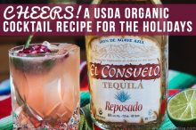 CHEERS! A USDA Organic Cocktail Recipe for the Holidays