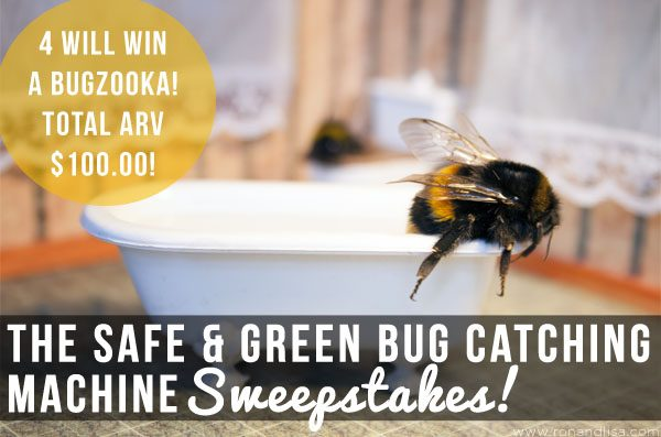 The Safe & Green Bug Catching Machine Sweepstakes!