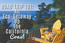 ROAD TRIP 101: An Eco-Getaway Up the California Coast