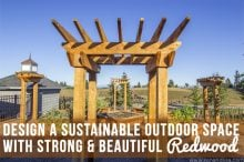 Design a Sustainable Outdoor Space with Strong & Beautiful Redwood