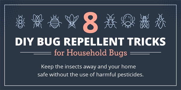 8 DIY Repellent Recipes for Household Bugs