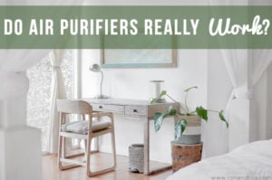 Do Air Purifiers Really Work