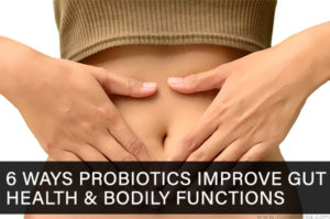 6 Ways Probiotics Improve Gut Health & Bodily Functions
