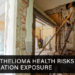 Mesothelioma Health Risks from Insulation Exposure